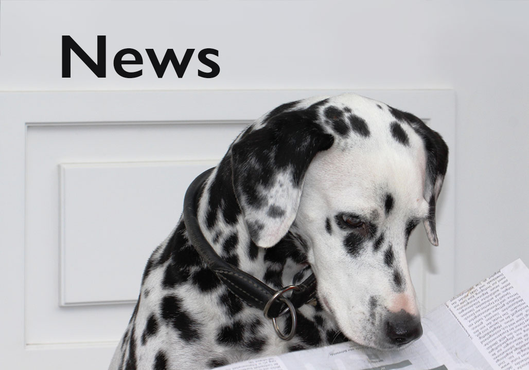 Kepley K9 News Blog
